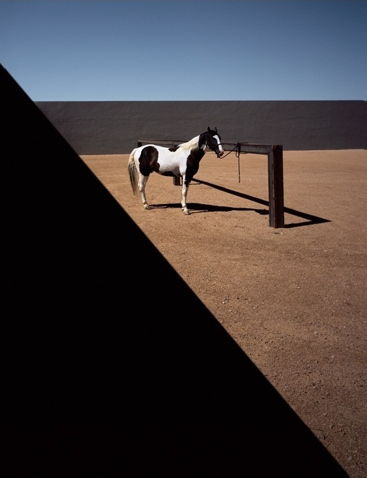Lisa Eisner, Tom Ford & His Sante Fe Ranch for GQ Australia tfranch 01 Carte image 07 o