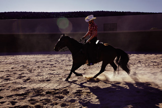 Lisa Eisner, Tom Ford & His Sante Fe Ranch for GQ Australia featured image
